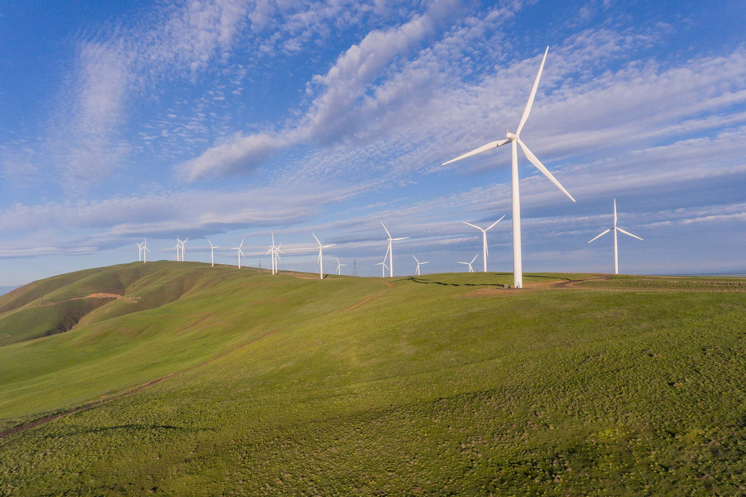 aerial drone view of wind farm oregon